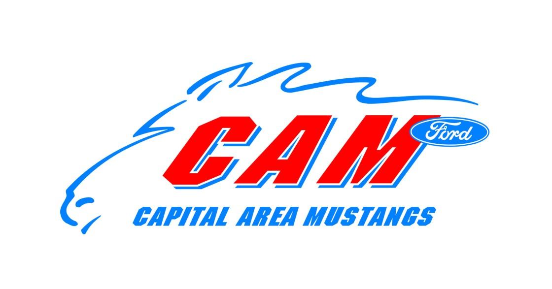 color CAM logo